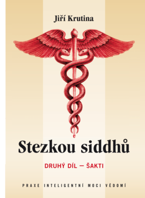 sezkou_siddhu_2_sakti